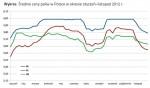 Bezpośredni odnośnik do Ceny paliw w 2012 roku