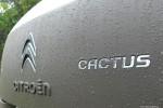Citroenem_C4_Cactus_14